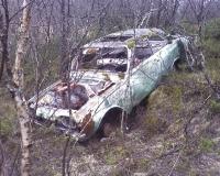 skogsvrak in Nordland