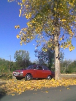 otoño en taunus p3